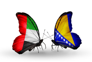 Two butterflies with flags UAE and Bosnia and Herzegovina