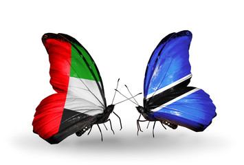 Two butterflies with flags  UAE and Botswana
