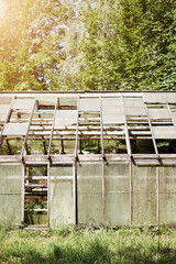 Old dilapidated garden greenhouse