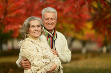 Old couple posing at autumn park