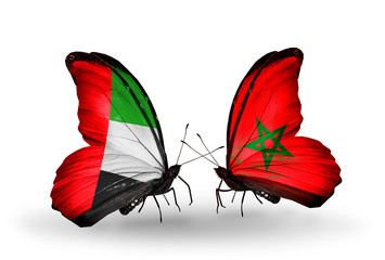 Two butterflies with flags UAE and Morocco