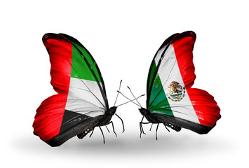 Two butterflies with flags UAE and Mexico