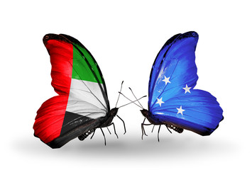 Two butterflies with flags UAE and Micronesia