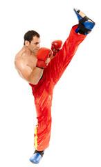 Muay thai trainer executing a kick