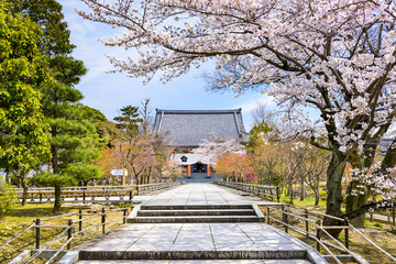 Springtime Temple in Kyoto, Japan at Chishaku-in Temple
