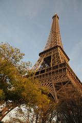 Gold Eiffel Tower in Autumn