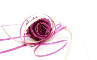 fleure rose et ruban cadeau