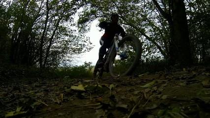 mountainbiker im wald faehrt abwaerts