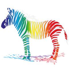 Zebra mit farbigen Streifen