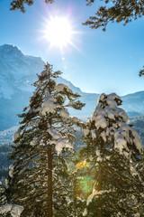 Winterwanderung 002
