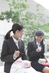 お弁当を食べながら会話するビジネスウーマン