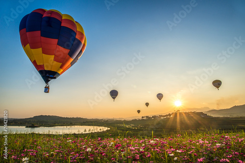 Poster Ballon Balloons flying over the cosmos flower field