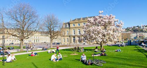 Schlosspark Stuttgart im Frühling - 74422289