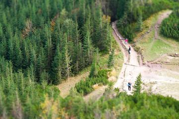 people on trail