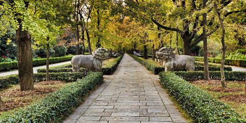 CN Nanjing Ming Tomb Alley