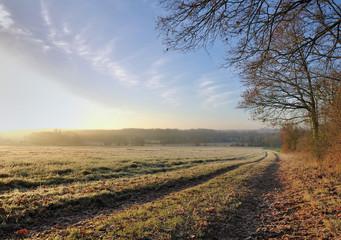 paysage rural en hiver