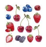 Fototapety Watercolor illustration of berries