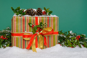 Christmas present on snow green background