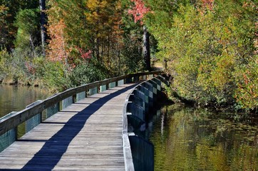 Boardwalk at Lake Juniper at Cheraw State Park