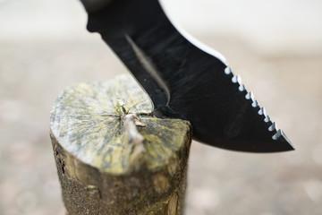 木に刺さったナイフ