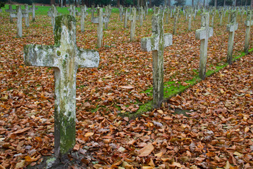 White crosses and fallen leaves on a cemetery