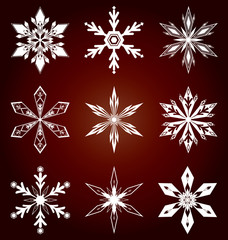 Set of snowflakes icon in vector.