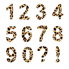 Vector alphabet numbers, trendy leopard pattern