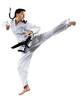 Leinwanddruck Bild - Professional female karate fighter isolated on white