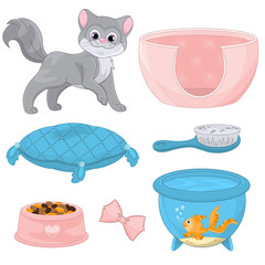 Cat With Different Toys And Accessories