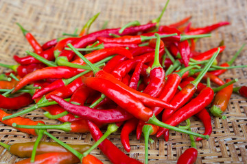 Red chili in basket