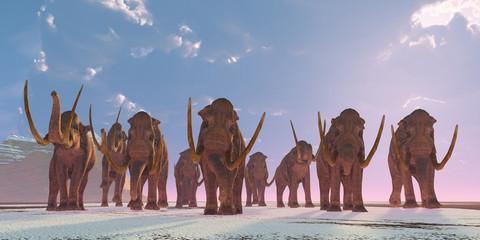 Columbian Mammoth Herd