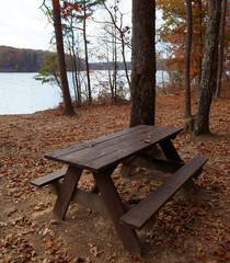 Remote picnic table