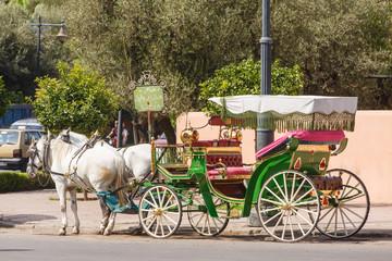 Marokko, Marrakesh, rijtuig