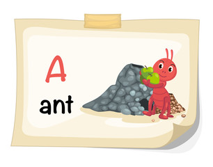 animal alphabet letter A for ant illustration vector