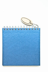 Blue blank book, Diary