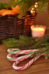 Cane candies under Christmas tree. Focus on the candies