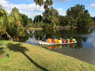 afternoon at Fairchild Gardens