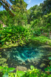Bua Tong Rainbow spring in Northern Thailand