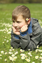 boy with daisies in the spring nature