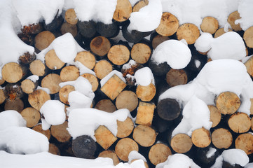 Forest harvested for firewood in the winter, folded into a stack