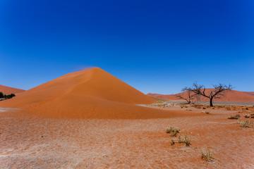 Dune 45 in sossusvlei NamibiaDune 45 in sossusvlei Namibia, view