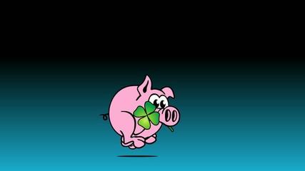 Lucky Pig 2015