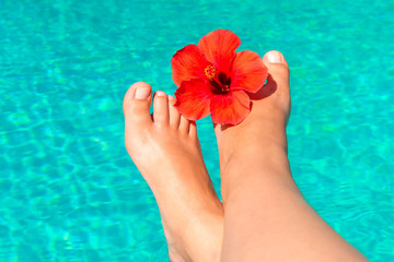 shapely female legs with red flower on the edge of the pool