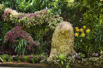 Shaded paradise garden