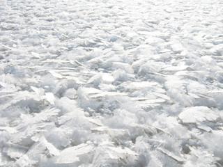 ice, snow