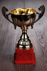 trophy cup the brown wooden table