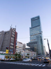 Abeno Harukas is the tallest building in Japan
