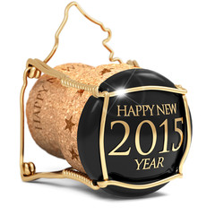 toast the new year