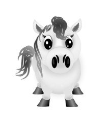 Small white pony