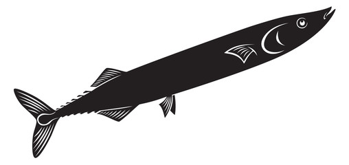 fish saury